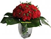 گلدان 511