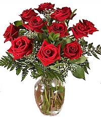 دوازده شاخه رز با گلدان
